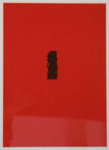 Sterren---roodzwart