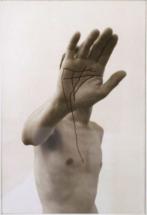 Wilmering---hand